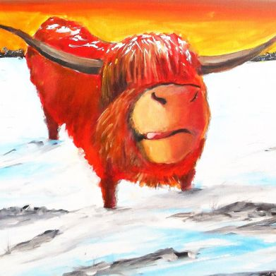 cold coo in the snow